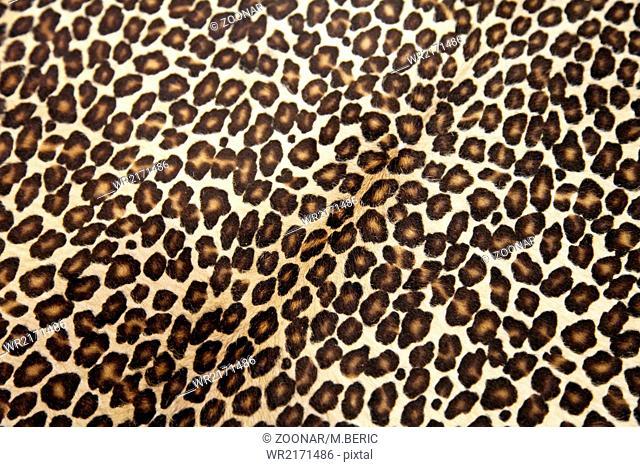 Leopard hyde