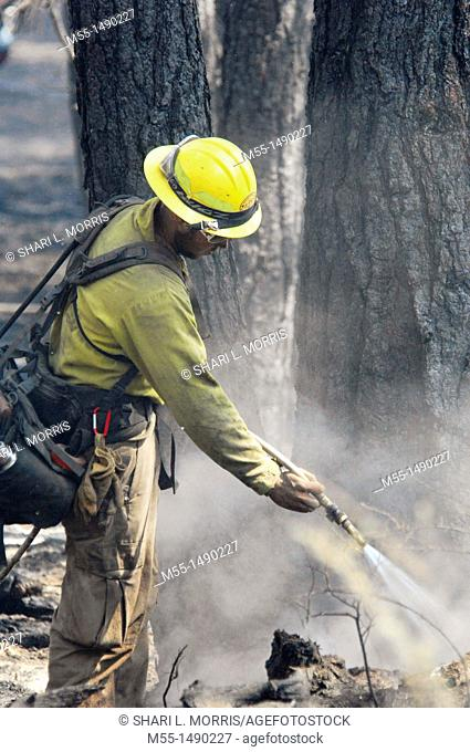 Wildland fire fighter with hose
