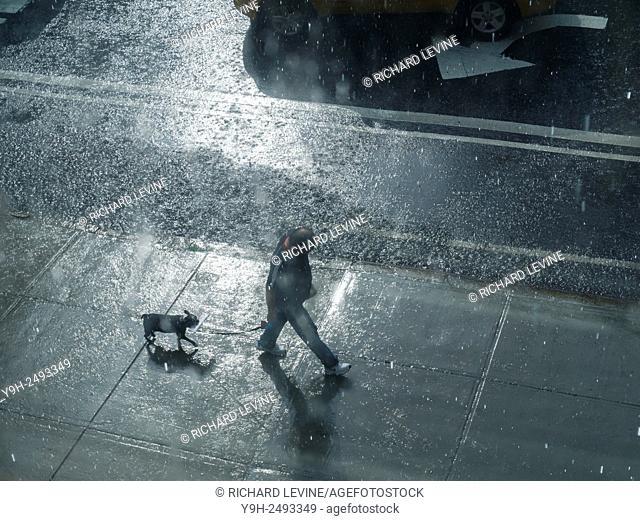 An unprepared dog walker in a torrential summer rain storm in the Chelsea neighborhood of New York