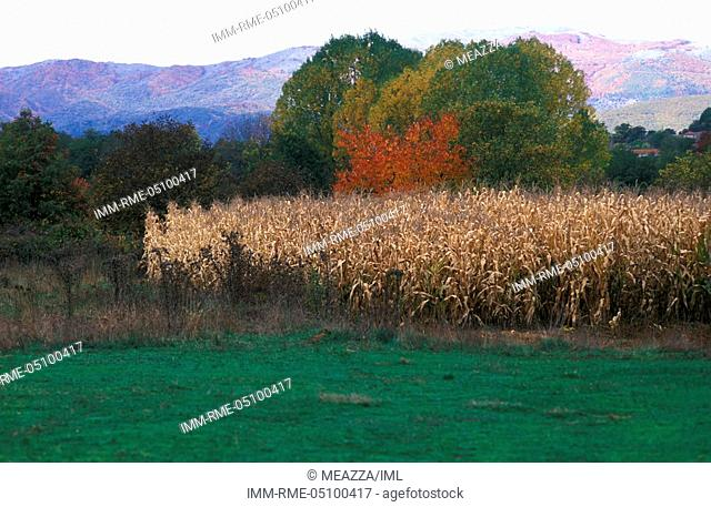 Landscape, Kastoria, West Macedonia, Greece