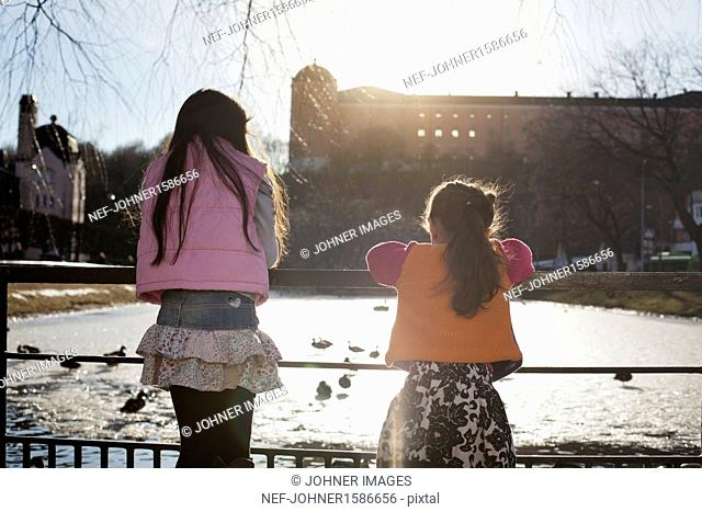 Girls looking at ducks in park
