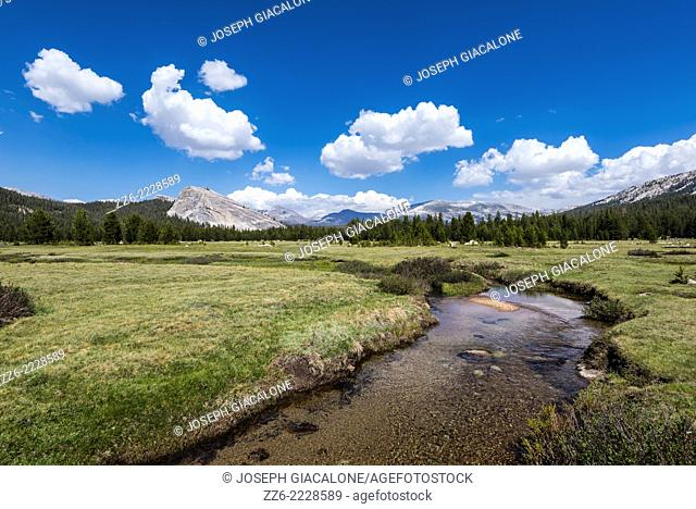 Tuolumne Meadows. Yosemite National Park, California, United States