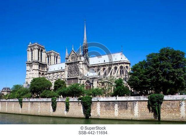 Cathedral on a riverbank, Seine River, Notre Dame, Paris, Ile-de-France, France