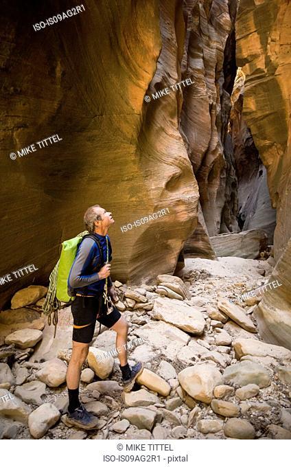 Man hiking, Echo Canyon, Zion National Park, Utah, USA