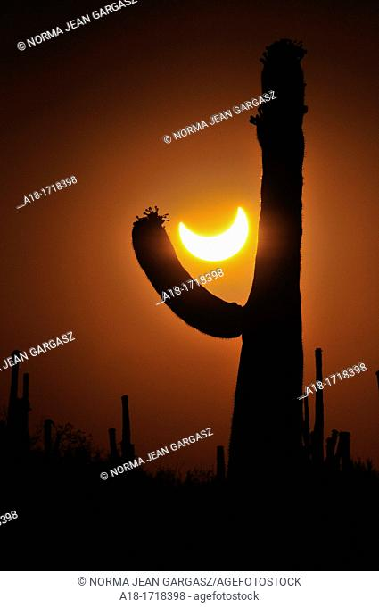 An annular solar eclipse in progress is seen from Ironwood Forest National Monument near Avra Valley, Arizona, USA, in the Sonoran Desert  The eclipse peaked at...