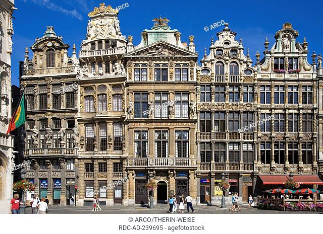Guildhalls, city hall square, old town, Brussels, Belgium / Grand Place, Grote Markt