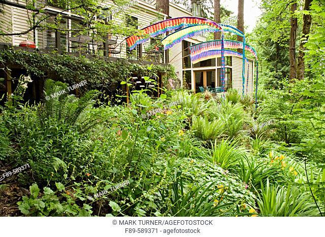 Colorful banners on edge of deck hang over woodland garden w/ Sword Ferns, Daylilies (Polystichum munitum; Hemerocallis cv