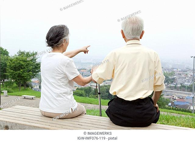 Japan, Tokyo Prefecture, Senior couple sitting on bench looking at view, rear view