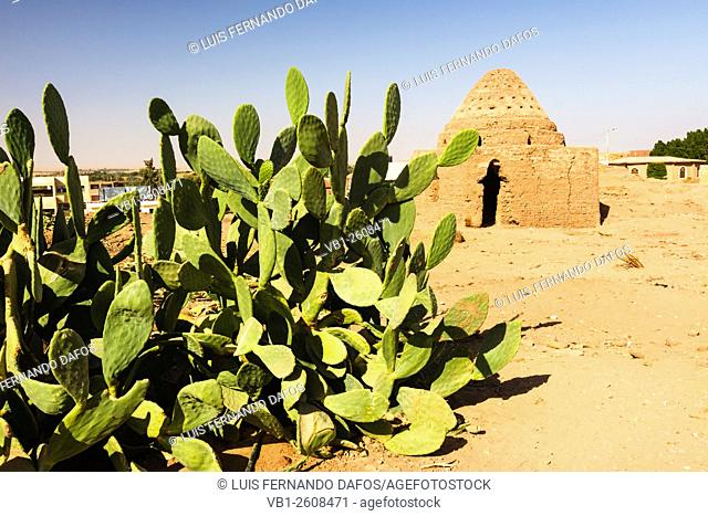 Mut old town, Dakhla Oasis, Egypt