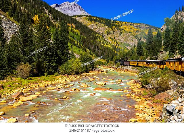 The Durango & Silverton Narrow Gauge Railroad on the Anamas River, San Juan National Forest, Colorado USA