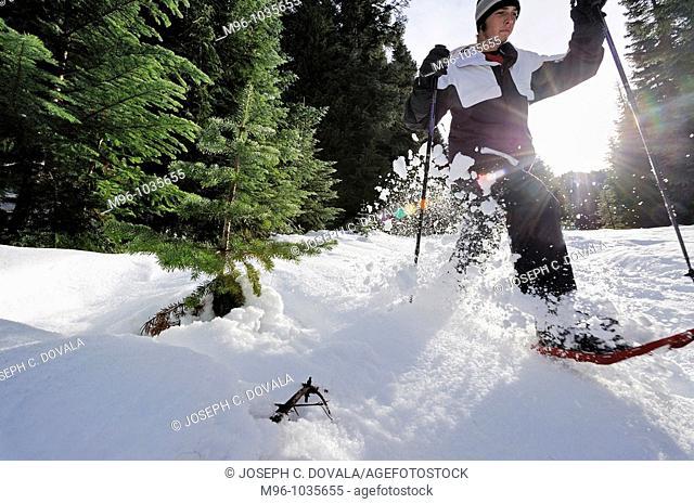Snowshoer with flying snow, Washington, USA