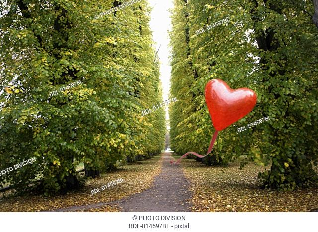 heart shaped red balloon flying over rural path in autumn