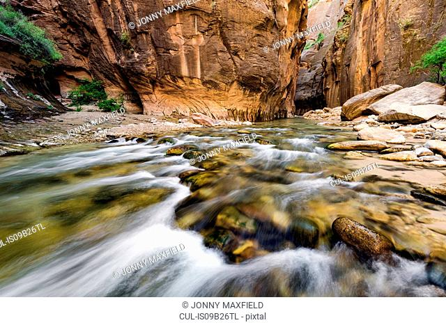 The Narrows, Zion National Park, Zion, Utah, USA