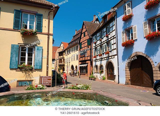 France, Haut Rhin (68), Eguisheim village (elected most beautiful french village), Stumpf street, fountain