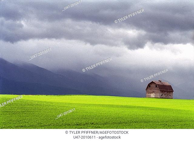 Barn in green field, storm in the back ground