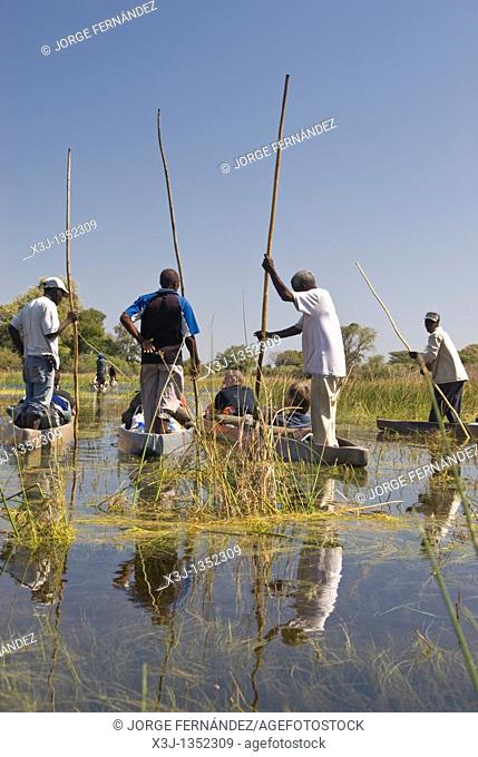 A mokoro is a boat made out of wood in the old times and of fiberglass nowadays, in wich kavango people travels in the Okavango Delta through the channels made...