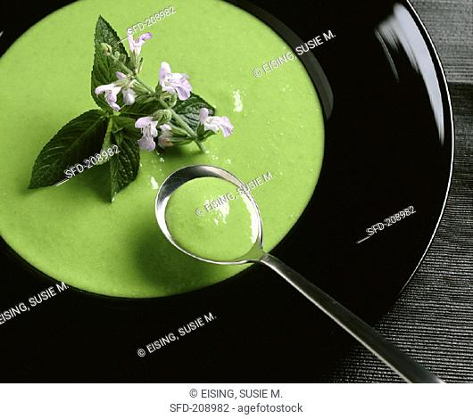 Green soup with mint & flowers on plate and spoon