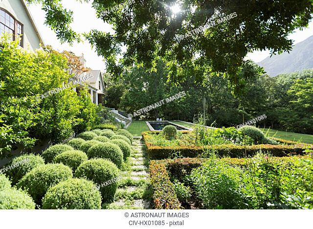Sunny lush green garden outside luxury home