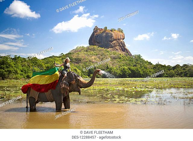 A woman on a Sri Lankan elephant (Elephas maximus), Sigiriya, an ancient palace located in the central Matale District near the town of Dambulla in the...