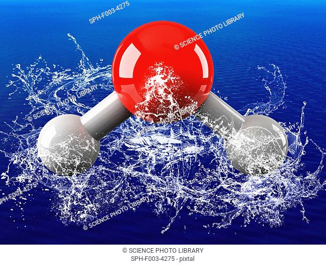 Water molecule, computer model. Atoms are represented as spheres and are colour-coded, hydrogen grey and oxygen red