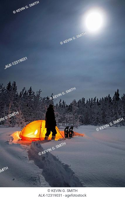 Silhouette of a man standing in front of a lit tent in deep snow near a spruce forest on a moonlit night, Copper River Valley, Southcentral Alaska, USA