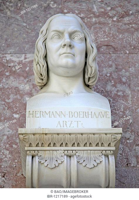 Bust of Hermann Boerhaave, Dutch physician