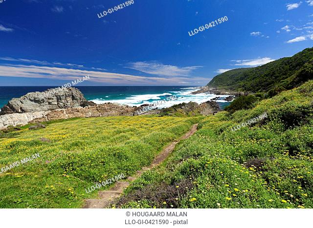 Wide view of a the end of the Otter Hiking Trail in Tsitsikamma NP near the Storms River Mouth. Western Cape, South Africa
