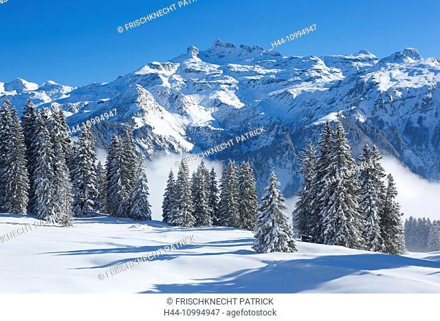 Freiberge, Kärpf, Glarus Alps, Switzerland
