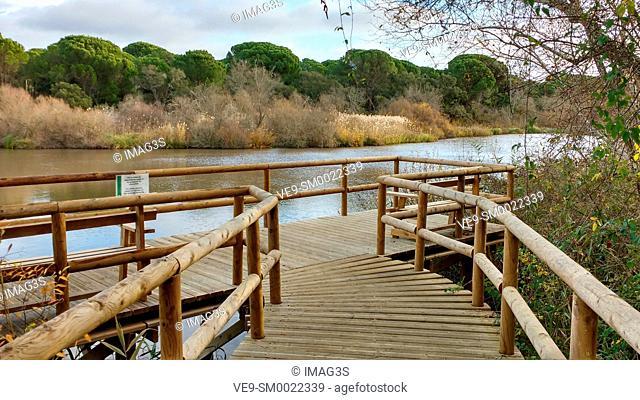 Lagoon (Charco del Acebrón) near El Acebrón palace, Doñana National Park, Huelva, Andalusia, Spain