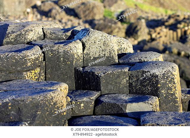 hexagonal basalt column steps on the giants causeway county antrim coast northern ireland uk europe