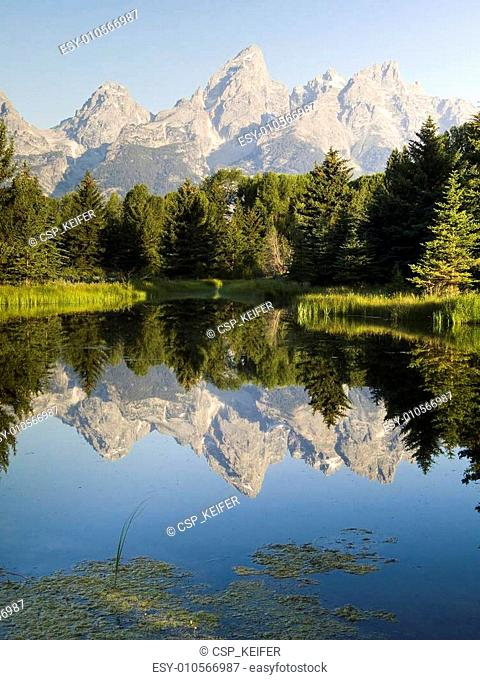 Teton Peaks and Beaver Pond