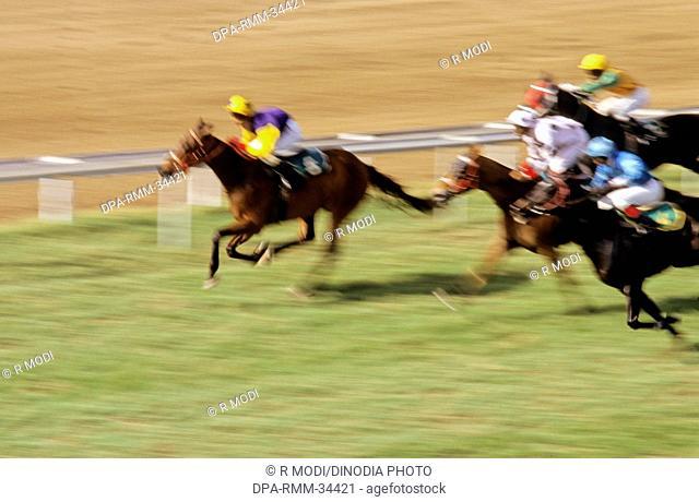 horse racing , mahalaxmi race course , mumbai bombay , maharashtra , india