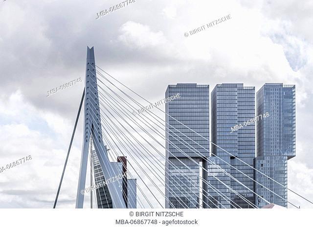 Erasmus Bridge, detail, in Rotterdam