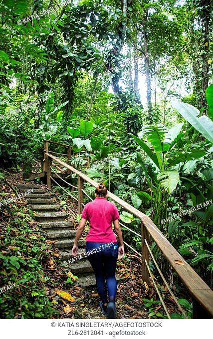 Massage therapist leading the way up the mountain and the stairs to the spa area. Wonderful experience getting a massage at a very authentic spa in the middle...