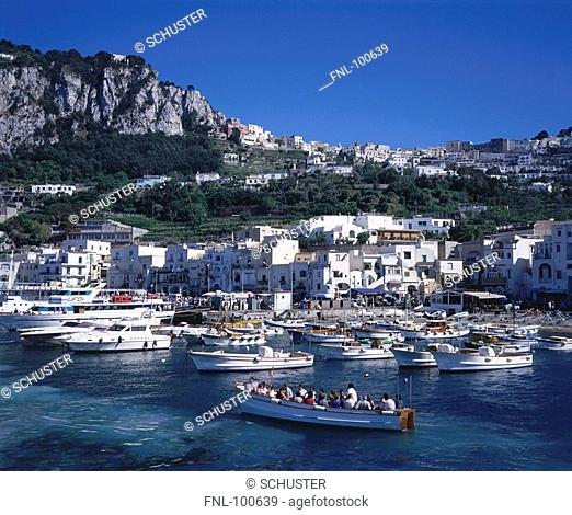 Boats moored at harbor, Marina Grande, Campania, Italy