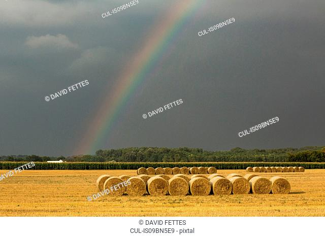 Rainbow and hay bales on field, Kiskunsagi National Park, Hungary