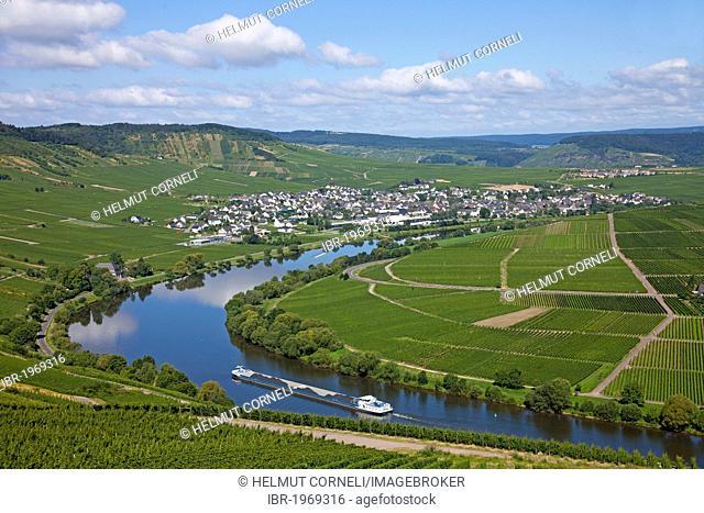 Leiwen on the Moselle river, Landkreis Bernkastel-Wittlich district, Rhineland-Palatinate, Germany, Europe