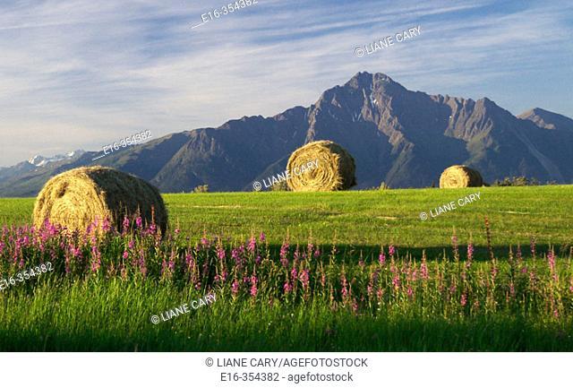 farmland, Alaska