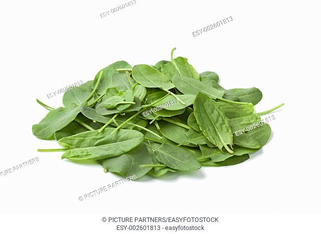 Fresh sorrel leaves on white background