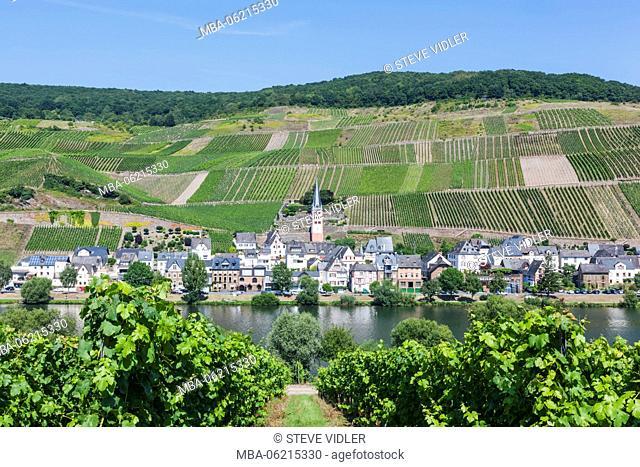 Germany, Rhineland-Palatinate, Moselle, Zell
