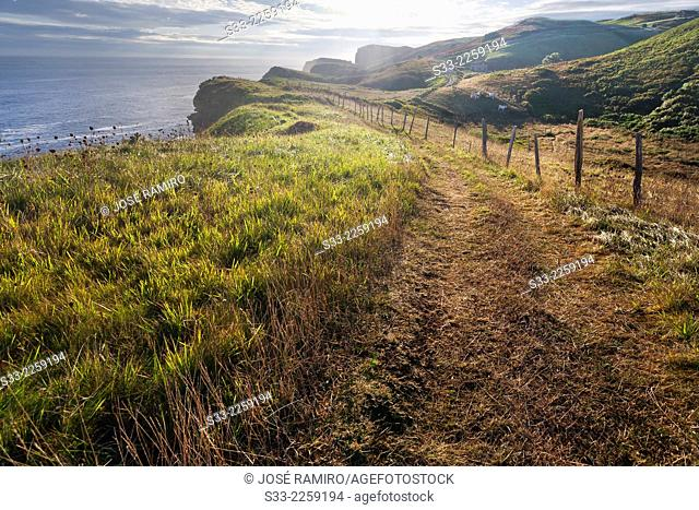Quejo cliffs. Santander. Cantabria. Spain. Europe