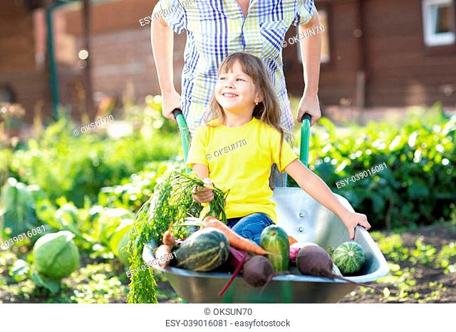 Child girl sitting in the wheelbarrow with vegetables harvest in garden