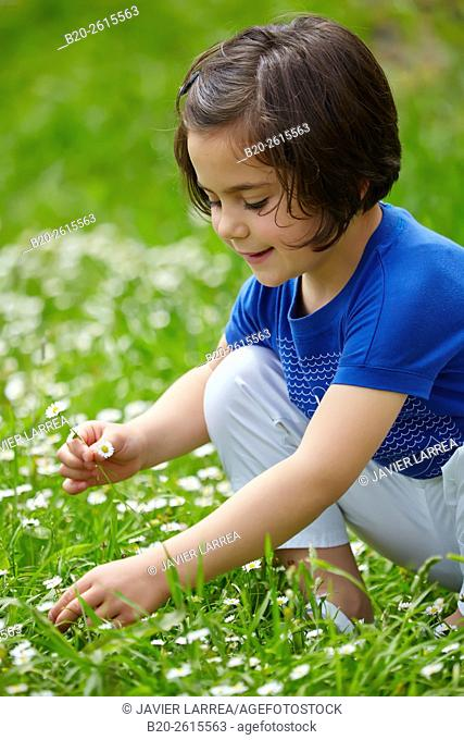 Little girl picking flowers in grass
