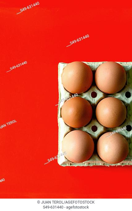 Eggs on red background