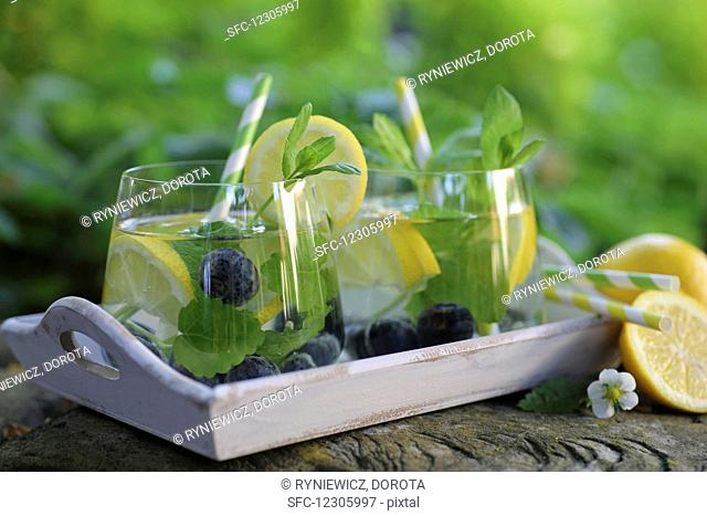 Water with lemon, blueberries and mint served in a garden