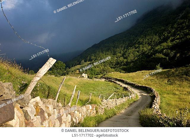 Path leading La Peral, Somiedo Nature Reserve, Asturias, Spain