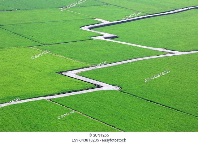 Growth graph on green road Stock Photos and Images | age