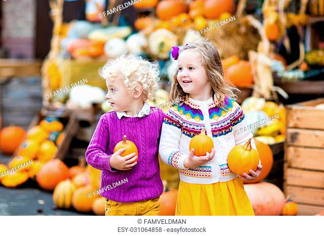 Group of little children enjoying harvest festival celebration at pumpkin patch. Kids picking and carving pumpkins at country farm on warm autumn day