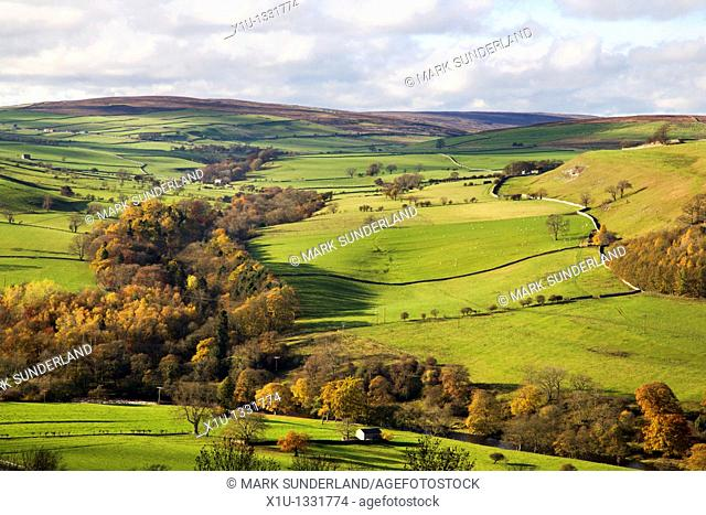 Swaledale from Downholme Viewpoint North Yorkshire England