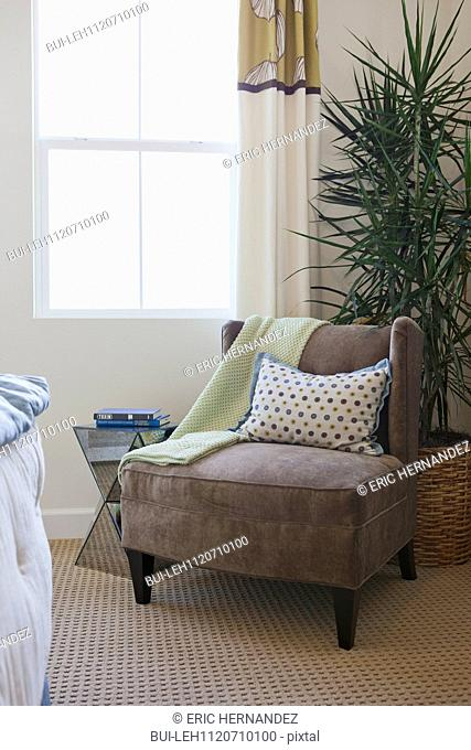 Armchair with house plant by window at home; San Marcos; California; USA